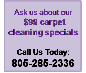 Carpet-Cleaning-Specials3